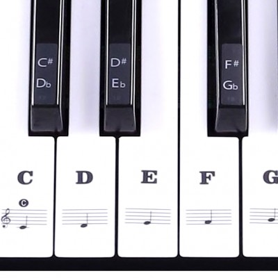 Musical keyboard stickers – for black and white keys